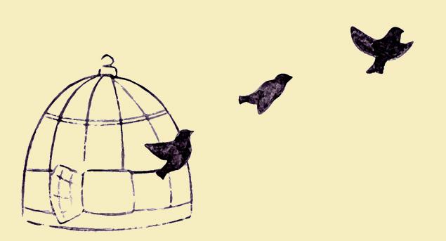 gaiola_passarinhos copy_b